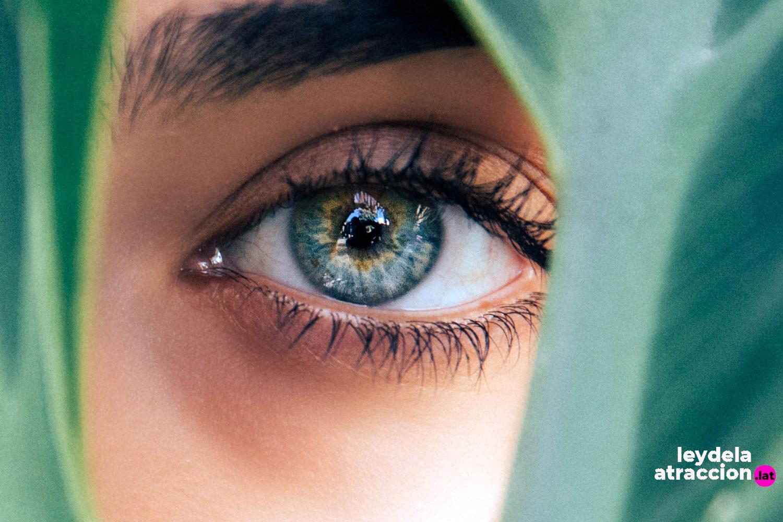 imagen blog Ley de la Atracción | ¿Eres visible o invisible ante la Ley de la Atracción?